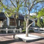 Chinese Gardens Darling Harbour