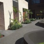 Councils Choose StoneSet for Tree Surrounds