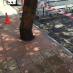 3291, Shopping Centre Tree Surrounds with Sterling and Coral Stone
